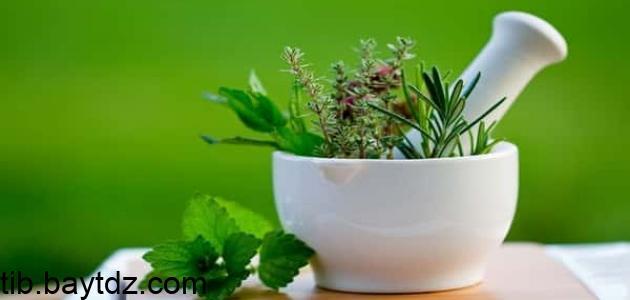 علاج الإنفلونزا بالأعشاب
