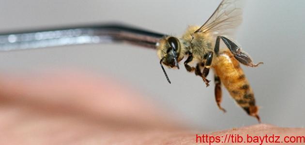 كيفية التداوي بسم النحل