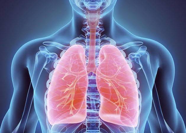 أكثر ثماني أمراض في الجهاز التنفسي انتشاراً