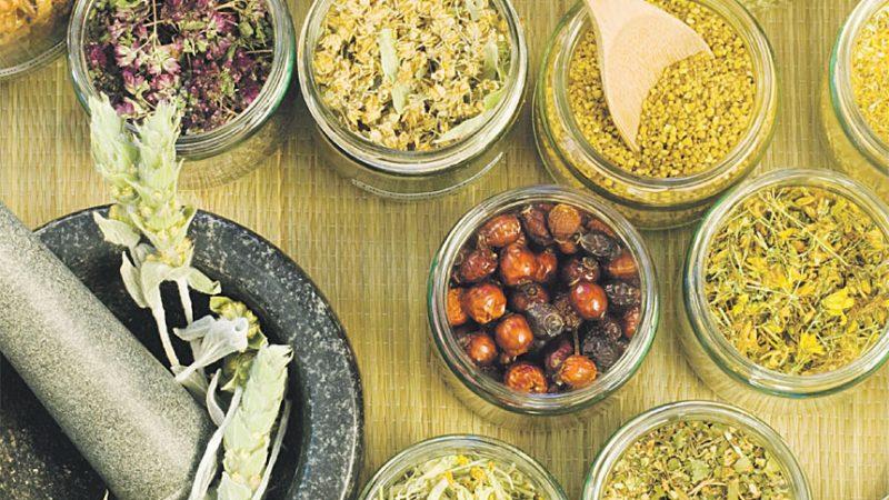 الطب البديل والأعشاب .. ماهي أنواعه وفوائده؟