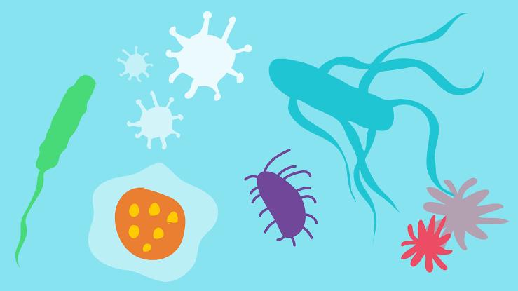 انواع الامراض وكيف يمكن للإختبارات الجينية علاجها؟